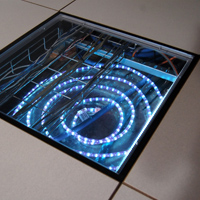 Clear View Access Floor Panel